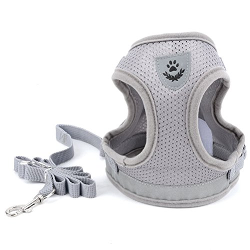 Zunea Small Dog Harness Leash Set No Pull Reflective Adjustable Step-in Soft Mesh Padded Puppy Vest Harness Leads, Cat Harness Escape Proof for Walking, for Girl Boy Pet Dogs Kittens Gray S