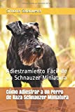 Cómo Adiestrar a Un Perro de Raza Schnauzer Miniatura: Adiestramiento Fácil de un Schnauzer Miniatura