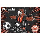 Eintracht Frankfurt Fahne Attila, Schwenkfahne 60 x 90 cm, Flagge SGE - Plus Lesezeichen I Love Frankfurt