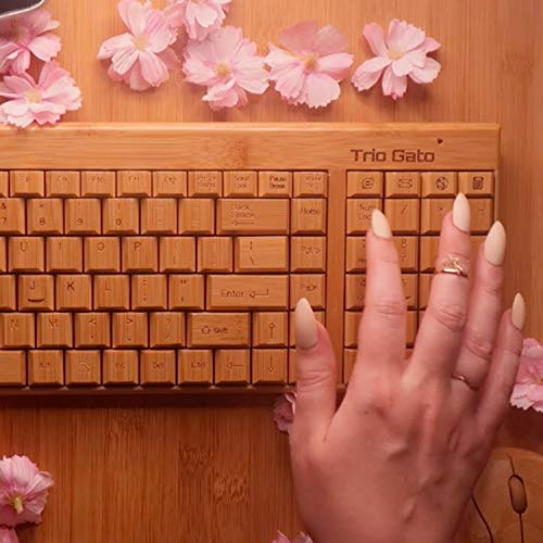 Don't worry, I typed your essay on this bamboo keyboard Pt.3