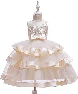 Luxury Children Princess Dress Embroidered Sleeveless Dress Princess Wedding Dress Tutu Stage Catwalk Costumes Girls Dress Butterfly Festival ryq (Color : Champagne, Size : 130cm)