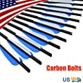 16 18 20 22 inch Crossbow Bolts Carbon Arrows with 4-Inch Vanes Replaceable Points Hunting Archery