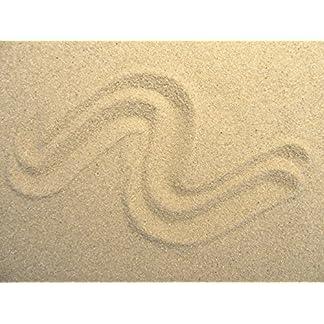 1kg - 5kg - 10kg - 25kg - 30kg Aquariumsand Körnung 0,4-0,8mm beige Natur