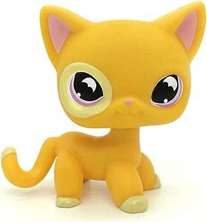 jjlin Mini Pet Shop #855 Orange Yellow Short Hair CAT Purple Moon Eyes Bat Eyes