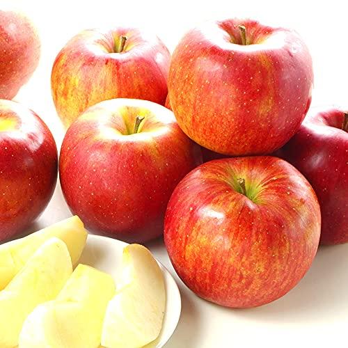 国華園 りんご 青森産 シナノスイート (10kg) ご家庭用 林檎 フルーツ 果物