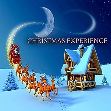 Christmas Experience (A Timeless Christmas Songs)
