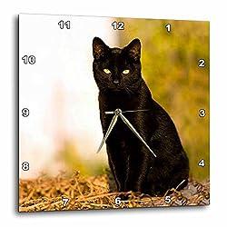 3dRose DPP_3163_3 Black Cat Wall Clock, 15 by 15-Inch