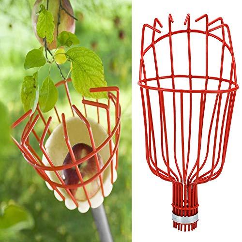 Cafopgrill Cueilleur de Fruits, Serre de Jardin Jardinage Ferme Acier Arbre Outil de ramassage de cueilleur de Fruits pour la récolte