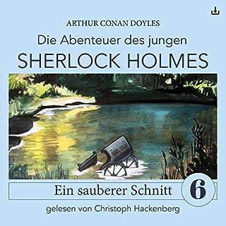 Sherlock Holmes - Ein sauberer Schnitt Titelbild