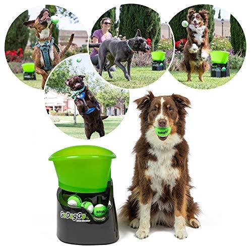 GoDogGo Fetch Machine G4 for Dogs Automatic Dog Ball Launcher Standard