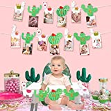 K KUMEED llama cactus Photo Banner, 1st Birthday Baby Photo Banner for Newborn to 12 Months, First Birthday High Chair Banner Baby Shower Kids Birthday Party Decor Fiesta Party Decorations