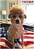 FMJI Trump Style Dog Wig Pet Costume, Donald Cat Wig Head Wear for Halloween, Christmas, Parties, Festivals