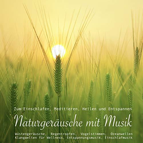 Naturgeräusche mit Musik zum Einschlafen, Meditieren, Heilen und Entspannen audiobook cover art