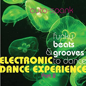 Electronic Dance Experience, Pt. 2 (Funky Beats & Grooves to Dance)