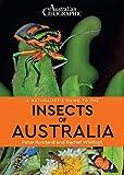 insectos australia