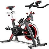 Fitfiu - BESP300 Bicicleta Spinning BESP24 Profesional Volante inercia 24kg Pantalla LCD, Unisex Adulto, Negro, Medium