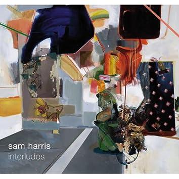 Sam Harris. Interludes