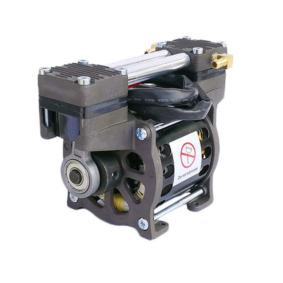 裁量のためにセグメントオイルフリーバキュームポンプ美容低騒音マイクロエアーポンプフルカッパーモーター医療用ポンプ圧力ポンプ圧力テストポンプパイプラインポンプ