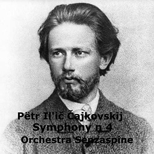 Tommaso Ussardi & Orchestra Senzaspine
