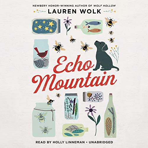 Echo Mountain Audiobook By Lauren Wolk cover art