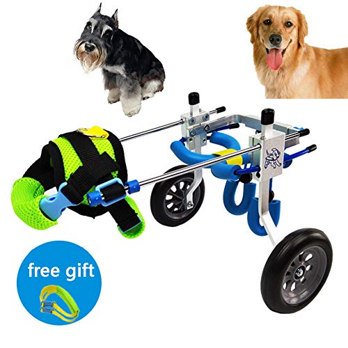 CoraStudio Dog Wheelchair, Best Friend Suitable for Any Large, Medium and Small Dog Cat 2-40 lbs, Wheelchair for Back Legs,L