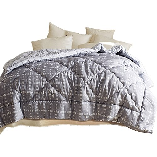 MMM Hiver Courtepointes Épaississement Garder Chaude Polyester Couette Core Double Literie Individuelle (taille : 200 * 230cm(3kg))