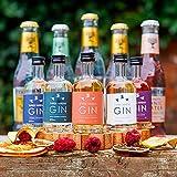 Three Wrens Gin Tasting Gift Set | Gin Gift Set (5 x
