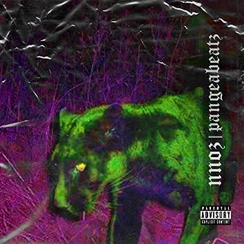 Agresif Kedi (feat. Pangea Beatz)