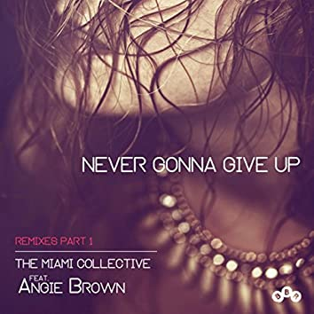 Never Gonna Give Up (Remixes Part 1)