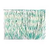 Artipistilos Oca Biot Bicolor - Fleco De 10 Cms. 50 Grs. X Metro, Verde Agua - Flecos