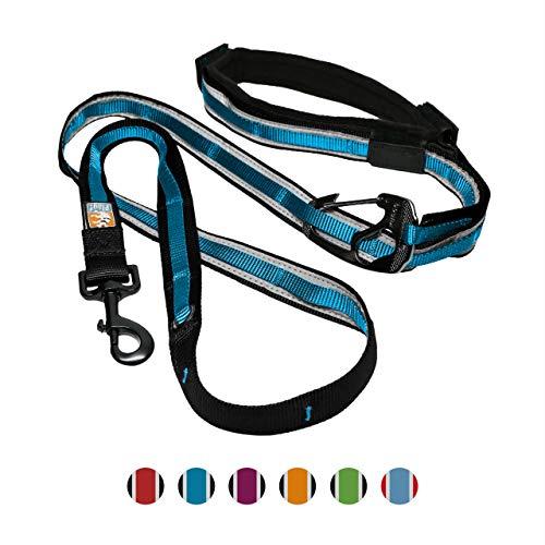Kurgo 6-in-1 Hands Free Quantum Dog Leash