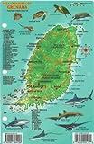 Grenada Dive Map & Reef Creatures Guide Franko Maps Laminated Fish Card