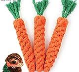 Pet Gift Dog Ineractive Spielzeug Hund Spielzeug Karotte Form Seil