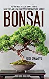 Bonsai: All You Need To Know About Bonsai: What They Are, How Many Types Exist And Their History