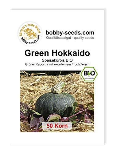 Green Hokkaido BIO Kürbissamen von Bobby-Seeds 50 Korn