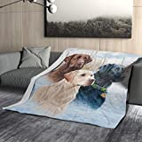 Granbey Three Labrador Flannel Blanket Super Soft and Comfortable Chocolate Labrador Blankets Suitable for Bed Sofa Travel Four Seasons Blanket 60x50 Inches (Home/Travel/Camping Applicable)