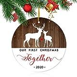 Top 10 Deer Ornaments