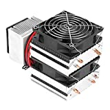 Radiatore termoelettrico, modulo di raffreddamento Peltier termoelettrico con contatto per risultati migliori