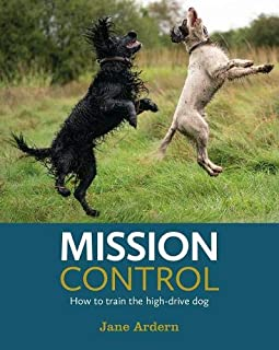 Mission Control: How to train the high-drive dog