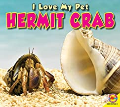 Hermit Crab (I Love My Pet)