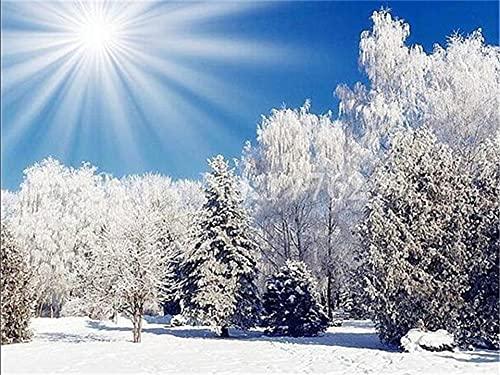 Xykhlj para adultospintura por numeros - Escena de Nieve Paisaje Natural. - Lienzo preimpreso - Principiantes para Niños y Adultos - Pinturas Decoraciones para el Hogar - 40x50cm - Sin Marco