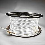 LMIAOM AC 220V llevó la tira 3014SMD 120leds / m impermeable raya ligera 1M 2M 5M 10M 15M 20M 25M brither brillante estupendo blanco blanco/caliente Nueva barra de luz LED (Color : 20m)