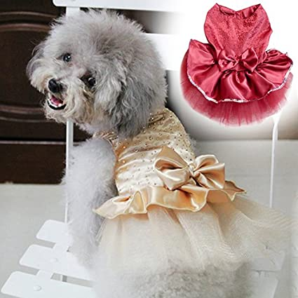 Dog Tutu Very Full skirt for small dogs WhiteIvory Sparkle Dog Tutu bichons terriers chihuahuas Sewn Tutu
