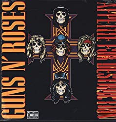 Appetite For Destruction [Vinyl Reissue]
