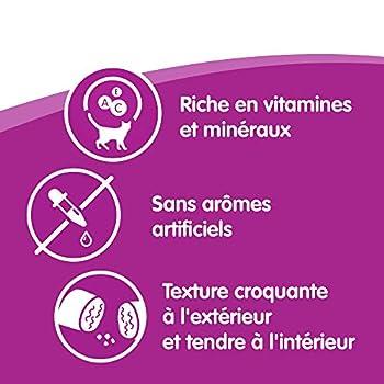 Whiskas Les Irrésistibles - Friandises au Poulet et au Fromage pour Chat, 10 Boîtes de 105g de Récompenses