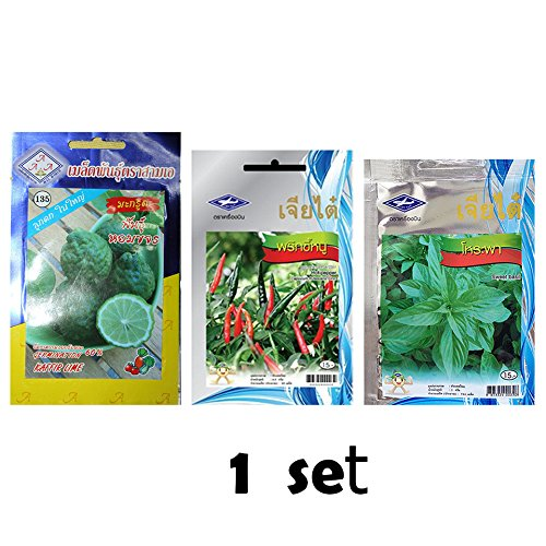 Love wood Thai Kaffir Lime and Hot Pepper Chili and Sweet Basil Seeds 1 sets From Chia Tai, Thailand