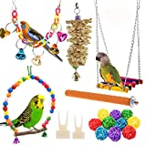 Anteer 12 Packs Bird Parrot Swing Chewing Toys - Hanging Bell Birds Cage Toys Suitable for Small Parakeets, Cockatiel, Conures,Finches,Budgie,Macaws, Parrots, Love Birds