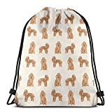 Toy - Puf de albaricoque para perros y cachorros, ligeros, para ir de viaje o la playa