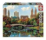 JAZC Puzzles Juguetes educativos de Descompresión 8000 Pedazos de Papel Puzzle Paisaje de Nueva York Central Park del Puente del Arco de niños for Adultos