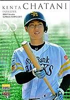 BBM2017 福岡ソフトバンクホークス レギュラーカード No.H51 茶谷健太